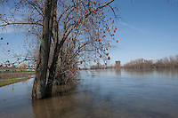 Spring High Water, Connecticut River, Hartford, CT.