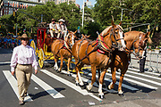 New York, NY - 25 June 2017. New York City Heritage of Pride March filled Fifth Avenue for hours with groups from the LGBT community and it's supporters. wells Fargo's stagecoach, pulled by four Clydesdales, was one of the most staid groups in the march.