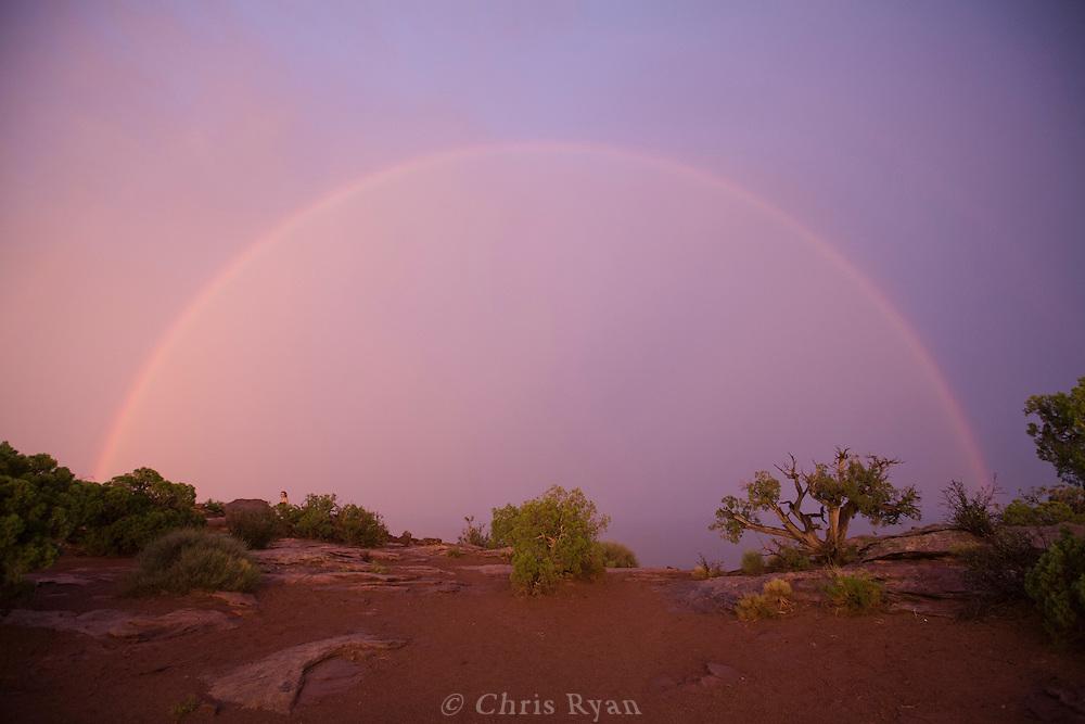 Rainbow over Deadhorse Point, Utah