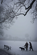 Dog walkers brave freezing temperatures in their local London park. During a prolonged cold spell of bad weather, snow fell continuously on the capital days before, allowing families the chance to enjoy the bleak conditions in Ruskin Park in the borough of Lambeth. Freezing fog also hampered any sun from thawing the fresh snow, keeping temperatures below zero. The branches of 100 year-old ash trees are seen bare above and in the distance over Victorian period homes.