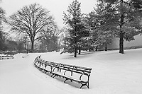 Winter snowscape in Central Park in back of the Metropolitan Museum