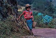 Todos Santos Indian shepherd girl, Huehuetenango, Guatemala