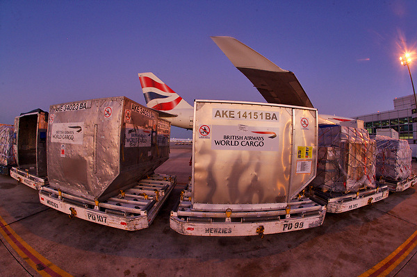 Cargo being loaded onto a British Airways airliner at Houston's Intercontinental Airport