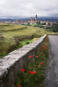 A country road with red flowers leading down to Segovia, Spain.