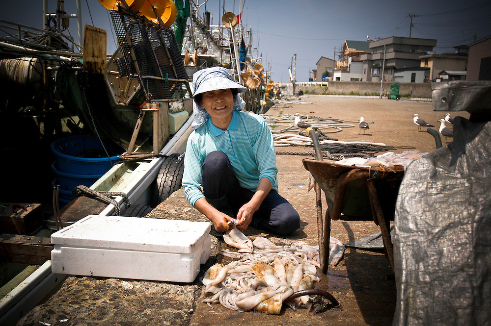 AOMORI KEN, JAPAN -  - Squid Fishing - a woman wash the squid on the port. After, she will make them dry. August 2005 ***[FR]*** Femme nettoyant les calamar avant de les faire secher.