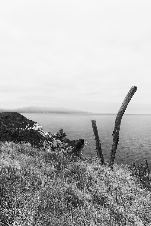 Near Potato Harbor. Island of Santa Cruz. Channel Islands, California.