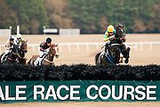 Colonial Cup - Camden, South Carolina. Willie Mccarthy wins aboard TOP STRIKER
