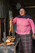 Cui or Guinea pig for food<br /> Chimborazo Province<br /> Andes<br /> ECUADOR, South America<br /> Inactive Volcano