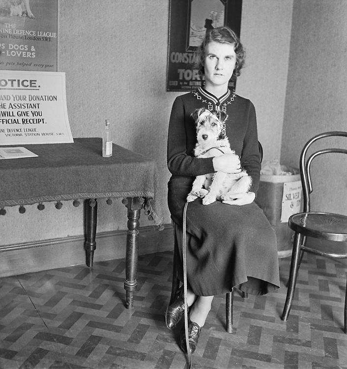 Dog Hospital, Croydon, London, 1935