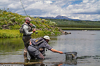 A fly angler on the Henry's Fork River brings a fish to the net after a short battle.