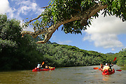 Kayaking, Huleia Stream, Kauai, Hawaii (editorilal use only, no model release)<br />