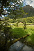 Landscape with view of a distant hut, a stream, a meadow and mountains, Routeburn Track, South Island, New Zealand