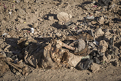 November 19, 2016 - Hammam Al-Alil, Nineveh Governorate, Iraq - Dead body from a mass grave in a dump at Hammam al-Alil, Iraq. (Credit Image: © Berci Feher via ZUMA Wire)