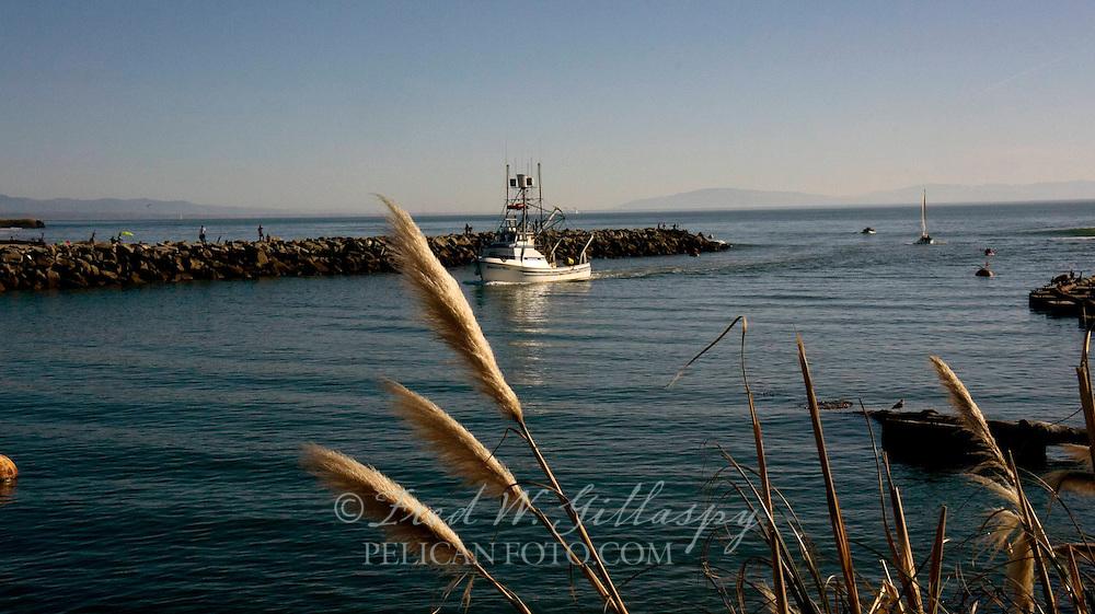 Santa Cruz Harbor 3888