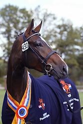 430-Ucarola<br /> KWPN Paardendagen Ermelo 2004<br /> Photo © Hippo Foto