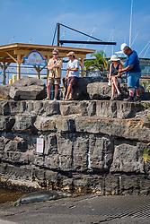NOAA government officials and locals keeping eyes on Hawaiian monk seal, Monachus schauinslandi, basking at boat ramp, young male, critically endangered species, Honokohau Harbor, Kona Coast, Big Island, Hawaii, USA, Pacific Ocean