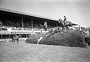 09/08/1967<br /> 08/09/1967<br /> 09 August 1967<br /> R.D.S. Horse Show, Ballsbridge, Dublin. Exhibition by the Hounds of the Meath Hunt on Wednesday at the RDS Horse Show, Dublin.