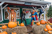 Superman, Elvis, a giant hot dog, and pumpkins gather at Big Moose Deli & Country Store, Hoosick Falls, New York, USA.
