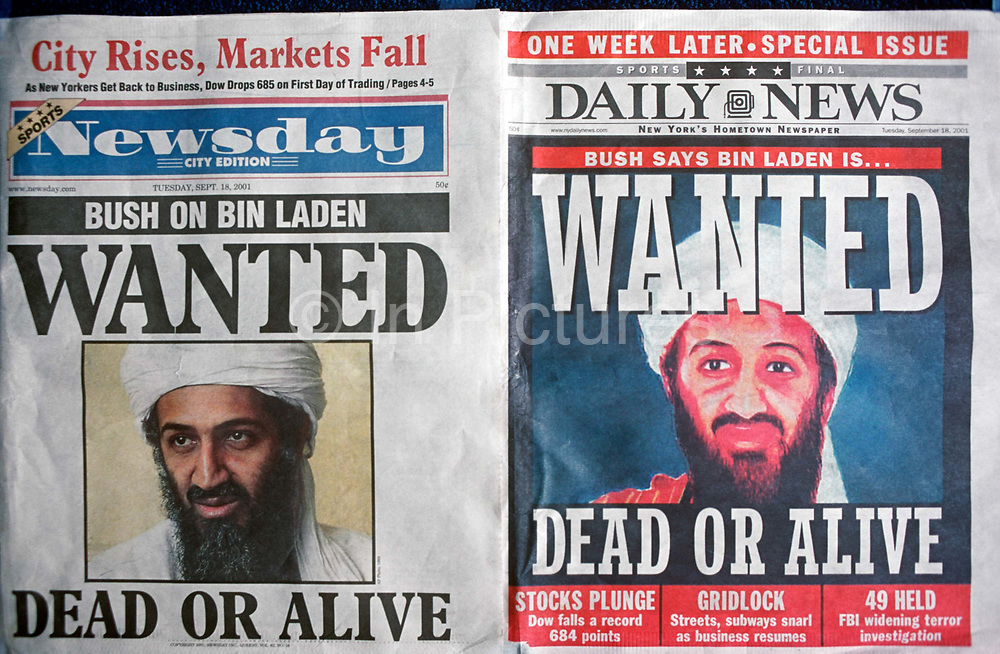 A week after the 9-11 terrorist attack on the Twin Towers and the Pentagon, front pages of Newsday and the New York Daily News with the faces of Osama bin Laden and a cowboy-era outlaws headline of Dead or Alive, on 18th September 2001, New York, USA.