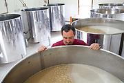 A man looking into a vat of Cachaca at Pedra Branca alambique (white stone distillery) Paraty, Rio de Janeiro, Brazil.