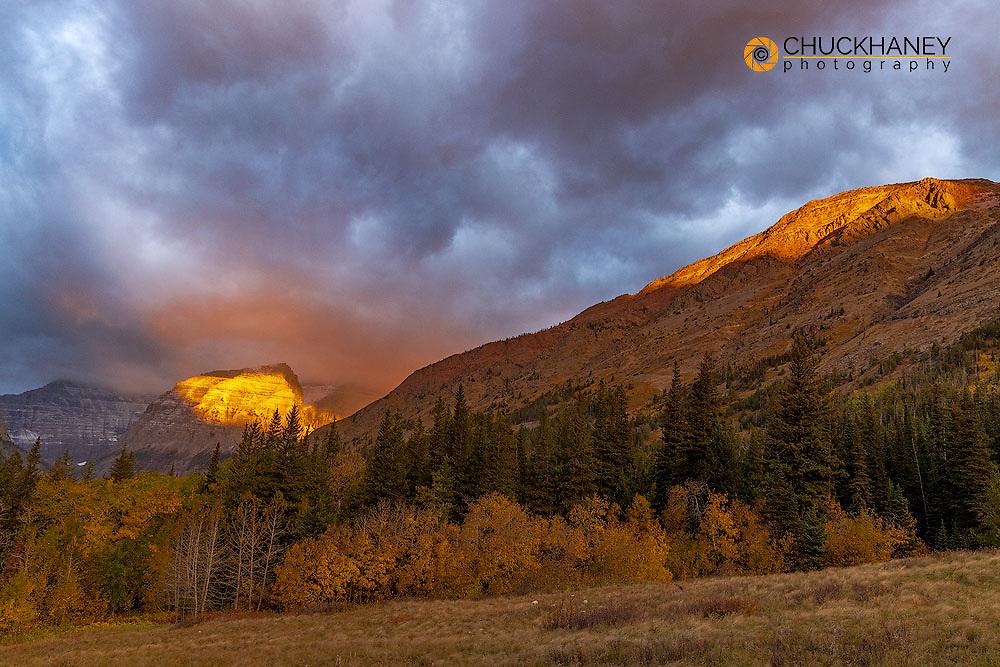 Shoulder of Mount Cleveland bathed in golden sunrise light in Glacier National Park, Montana, USA