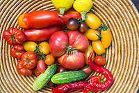 Still life of summer vegetables.
