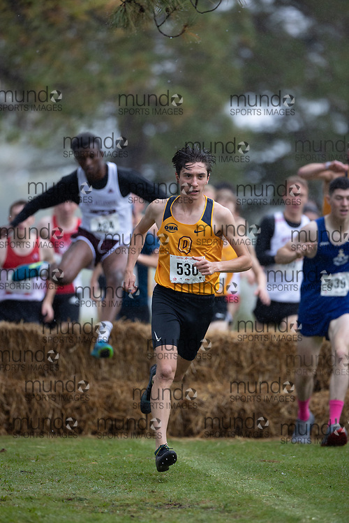 (Ottawa, Canada---02 October 2021)  Roman  Mironov (Queen's Gaels) competing in the University/Open Men's race at the 2021 Capital Cross Country Challenge held at Mooney's Bay Park in Ottawa.<br /> <br /> Photograph 2021 Copyright Miles Ryan Rowat / Mundo Sport Images