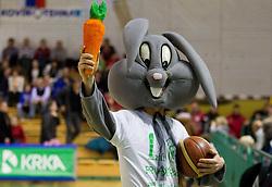 Rabbit, Mascot of Krka during basketball match between KK Krka Novo mesto and Pinar Karsiyaka (TUR) in 5th Round of EuroChallenge 2013 on December 4, 2012 in Arena Leon Stukelj, Novo mesto, Slovenia. Krka defeated Pinar Karsiyaka 80-74. (Photo By Vid Ponikvar / Sportida)