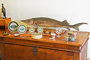 "A table with products from sturgeon and a stuffed fish: caviar, tins, glass jars with pate  ""Caviar et Prestige"" Saint Sulpice et Cameyrac  Entre-deux-Mers  Bordeaux Gironde Aquitaine France - at Caviar et Prestige"