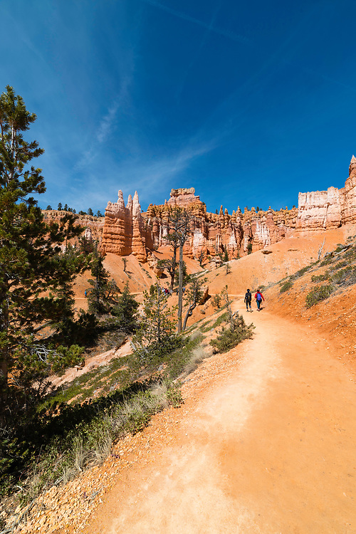 View of Bryce Canyon National Park, near Tropic, Utah, United States.