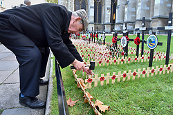 © Licensed to London News Pictures. 08/11/2017. London, UK.  Volunteers help to lay ceremonial poppies in the Field of Remembrance outside Westminster Abbey as preparations for Armistice Day and Remembrance Sunday begin in, and around, Westminster.  Photo credit: Stephen Chung/LNP