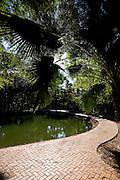 Goiania_GO, Brasil...Bosque dos Buritis na cidade de Goiania, Goias...The Bosque dos Buritis in Goiania, Goias...Foto: BRUNO MAGALHAES / NITRO