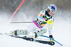 20130127 SLO: FIS Worldcup 49th Golden Vox, Maribor