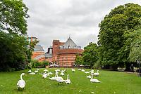 Thw Swan Theatre Stratford upon Avon photo bt Mark anton smith