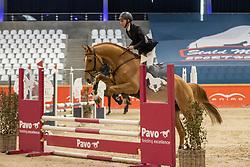 Tonet Ive, BEL, Gancio van't Smisveld Z<br /> Pavo Hengsten competitie - Oudsbergen 2021<br /> © Hippo Foto - Dirk Caremans<br />  22/02/2021