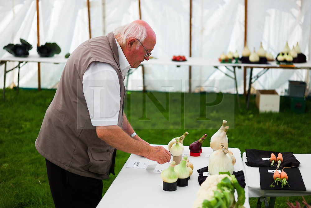 © Licensed to London News Pictures.12/08/15<br /> Danby, UK. <br /> <br /> A man arranges his entry of onions ahead of judging at the 155th Danby Agricultural Show in the Esk Valley in North Yorkshire. <br /> <br /> The popular agricultural show attracts competitors and visitors from all over the surrounding area to this annual showcase of country life. <br /> <br /> Photo credit : Ian Forsyth/LNP