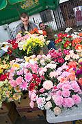 Artificial and fresh flowers at the Balucki Rynek market.  Lodz   Central Poland