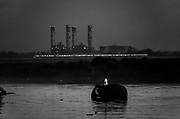 28th May 2014, Yamuna River, New Delhi, India. A Mahout rides an elephant in the Yamuna river at dusk with a metro train and the Indraprastha Power Station in the background, New Delhi, India on the 28th May 2014<br /> <br /> Elephant handlers (Mahouts) eke out a living in makeshift camps on the banks of the Yamuna River in New Delhi. They survive on a small retainer paid by the elephant owners and by giving rides to passers by. The owners keep all the money from hiring the animals out for religious festivals, events and weddings, they also are involved in the illegal trade of captive elephants. The living conditions and treatment of elephants kept in cities in North India is extremely harsh, the handlers use the banned 'ankush' or bullhook to control the animals through daily beatings, the animals have no proper shelters are forced to walk on burning hot tarmac and stand for hours with their feet chained together. <br /> <br /> PHOTOGRAPH BY AND COPYRIGHT OF SIMON DE TREY-WHITE + 91 98103 99809<br /> email: simon@simondetreywhite.com<br /> Photographer in Delhi
