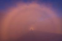 Glory with Brocken spectre phaenomenon and photographer's shadow. High Tatras, Slovakia. June 2009. Mission: Ticha