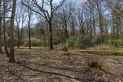 Klarenbeek, Voorst, Gelderland, Netherlands
