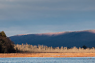 Sunlight and shadows at the Bashakill Wildlife Management Area in Mamakating, N.Y., on Dec. 5, 2020, in Middletown, N.Y.