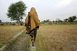 Mukhtar Mai, 33, walks through a field to visit an aunt she hadn't seen in four years, Meerwala, Pakistan, April 28, 2005. Mai, went against the Pakistani tradition of committing suicide when she brought charges against the men who gang raped her nearly three years ago.