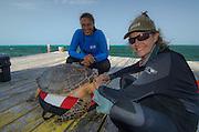 Rachel Graham, Renee Bish & Hawksbill turtle (Eretmochelys imbricata)<br /> Lighthouse Reef Atoll<br /> Belize<br /> Central America