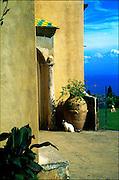 Villa Cimbrone, Ravello / Catalog #502