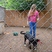 070915  Adron Gardner/Independent<br /> <br /> Paige Gruda walks with Bronco in a pen at the Gruda home in Gallup Thursday.  Bronco is a foster dog from the humane society who has a damaged ear drum.