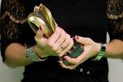 Trophy during the 2013 Slovenia Hall of Fame induction ceremony, on November 28, 2013 in Arena Stozice, Ljubljana, Slovenia. Photo by Vid Ponikvar / Sportida