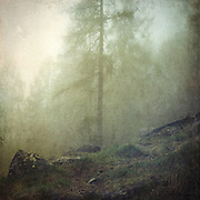 Mountain hike from Chiesa to Primolo - Valmalenco/ Lombardia/Italy<br /> Textured photograph