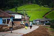 India, Kerala. Tea pickers coming back home in a village situated among tea plantations of Munnar.