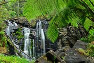 Oceania; Australia; Australian; Down Under; Victoria; Great Otway National Park, Stevensons Falls