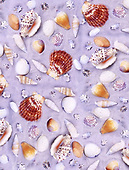 1 Repeated designs/ Wrapping paper